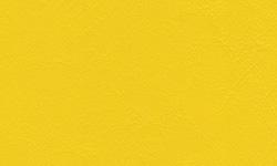205 Daytona Yellow