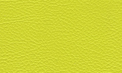 209 Polaris Lime Squeeze Vinyl