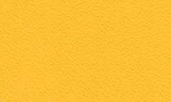 H - Yellow Vinyl