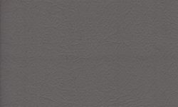 203 Daytona Light Gray Vinyl