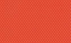 216 Edge Orange