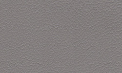 226 PVL Light Gray