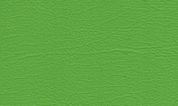 W - Kawi Green