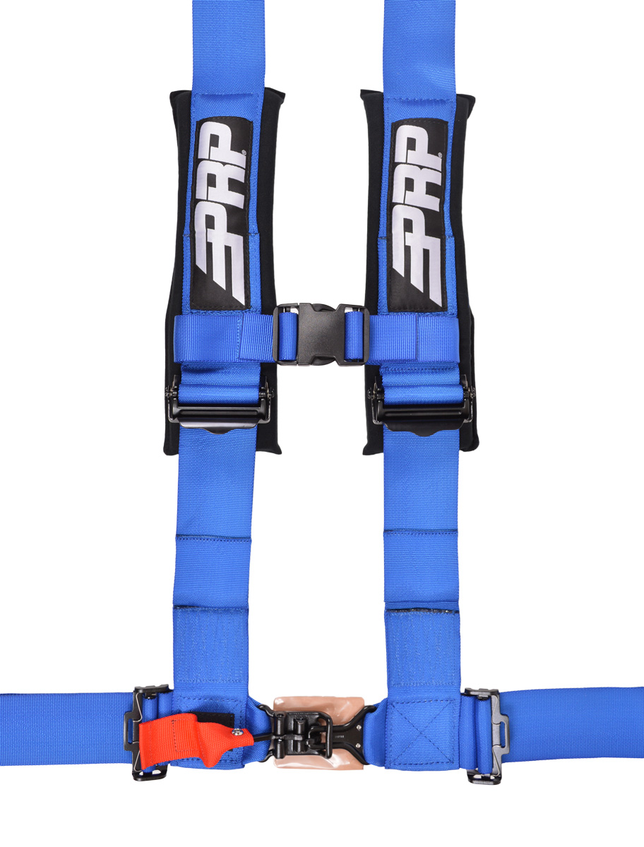 4 point, 3 inch harness in blue